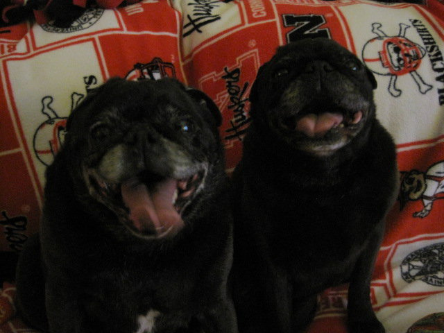 Earl & Wilbur 1