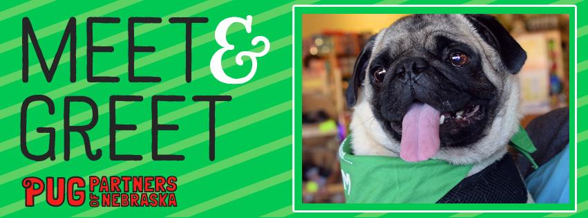 Meet greet at long dog fat cat village pointe pug partners of meet greet at long dog fat cat village pointe m4hsunfo
